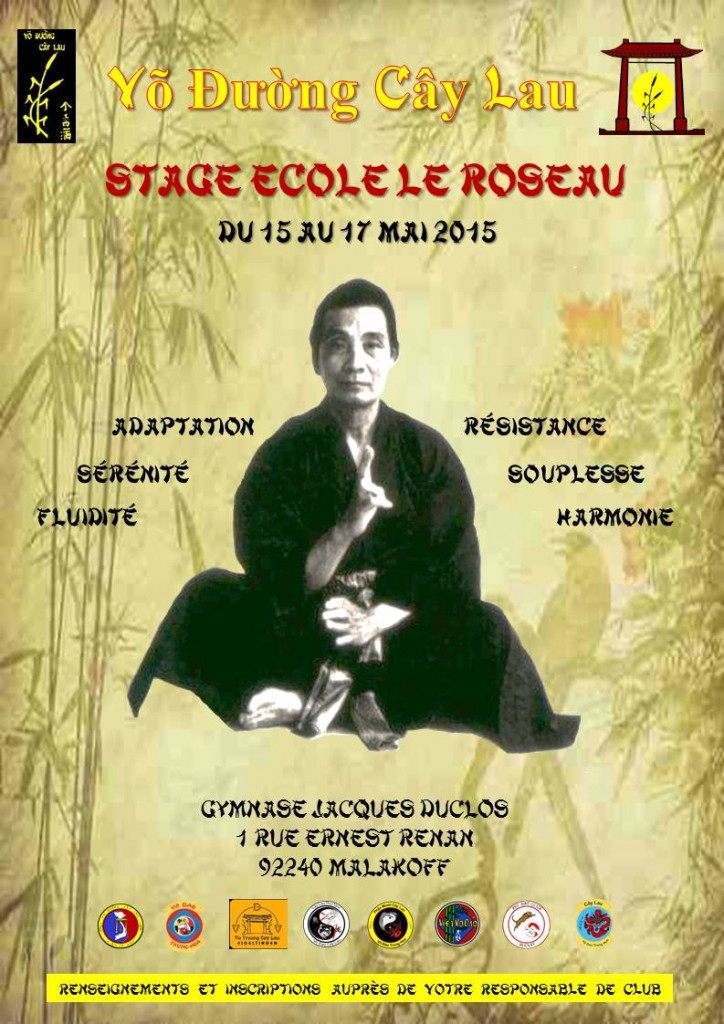 Affiche Stage France Mai 2015